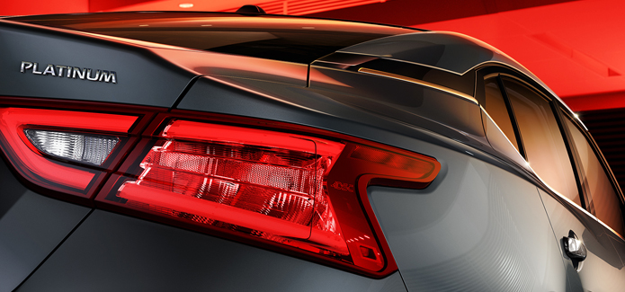 Taillights With Integrated Led Signature